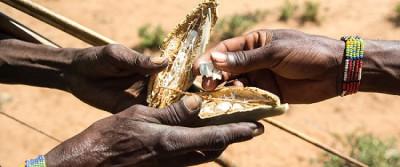 Hadza food - Carbon Tanzania