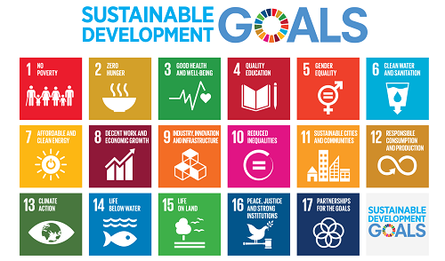 Sustainable Development Goals - Carbon Tanzania