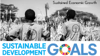 Business Case for SDGs - Carbon Tanzania