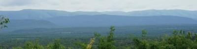 Greater Mahale Ecosystem Tanzania - Carbon Tanzania