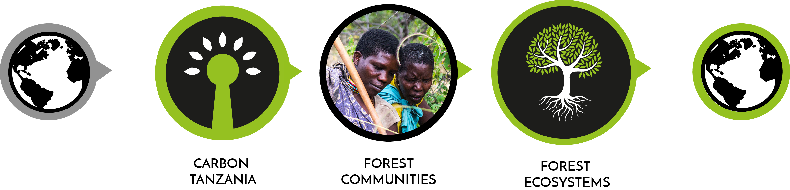 Forest conservation-forest communities-mitigating climate change icons - Carbon Tanzania