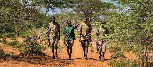 Forest carbon offset project - community guards