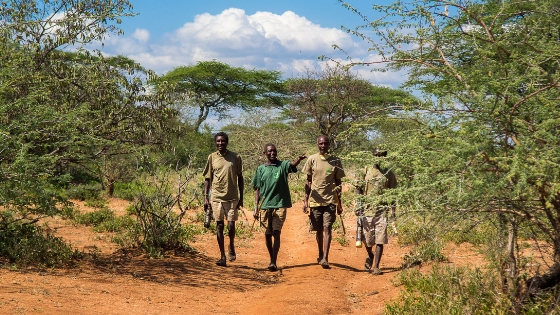 5 reasons to use forest carbon offsets - Carbon Tanzania