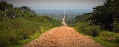Road to conserving Makame - Carbon Tanzania