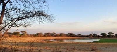 Carbon-Tanzania-makame-carbon-partnership
