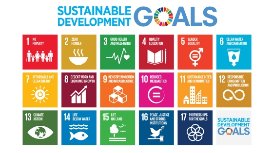 What are the SDGs - Carbon Tanzania