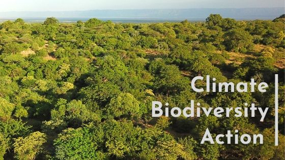 Climate_Biodiversity_Action_Forests