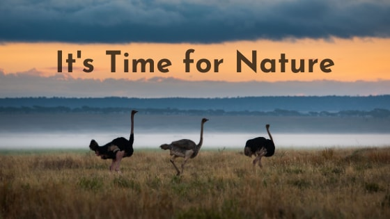 It's Time for Nature