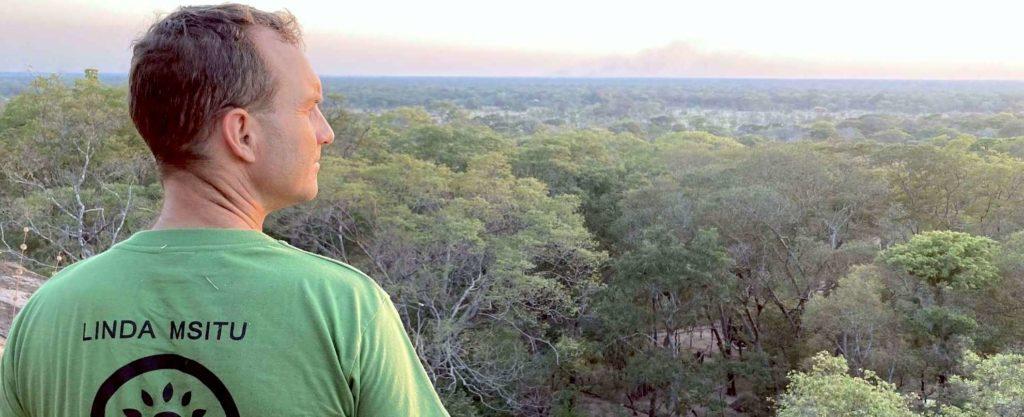 Miombo Woodland Tanzania