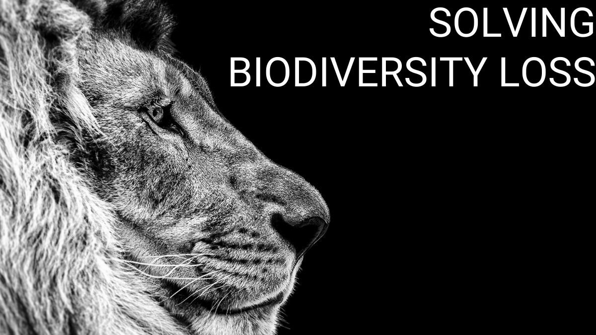 Lion head with text solving biodiversity loss